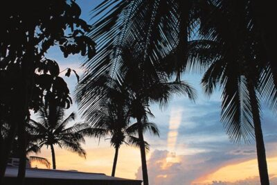 A Tropical Vacation—No Passport Needed