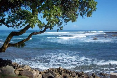 Part One: Turtle Bay on O'ahu's North Shore